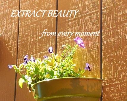 extract beauty