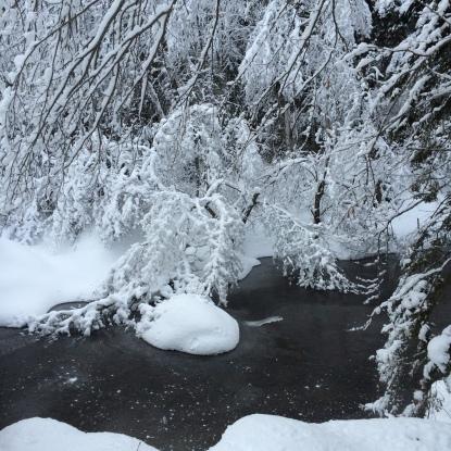silence and snow